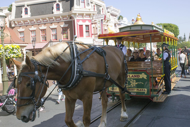 Lifelong bonds formed working at Disneyland   Mark Eades Enterprises